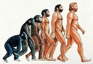 サルから人間へ